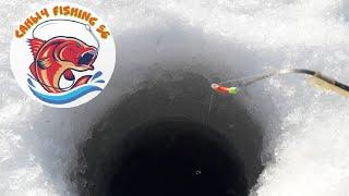 Зимняя рыбалка 2020 подводная съемка ловля окуня глухозимье началось