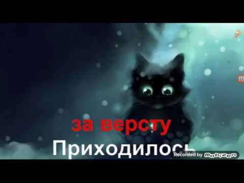 Песни про черного кота слушать онлайн бесплатно