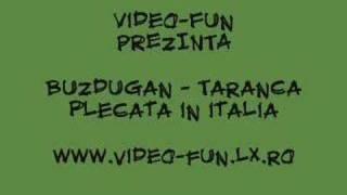 VideoFUN.RO.TL - Buzdugan - Taranca plecata in italia