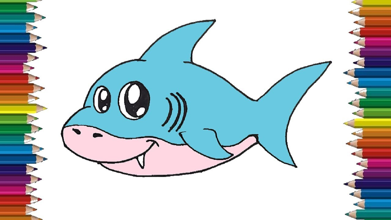 How to draw a baby shark step by step Cute shark drawing