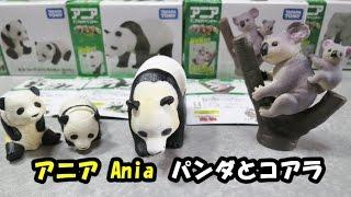 """アニアのジャイアントパンダとコアラの親子だよ。 It's a ania toy """"jia..."""