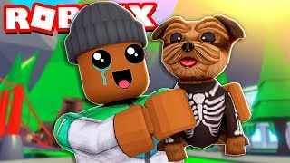 adopting my first pet in roblox adopt me new update