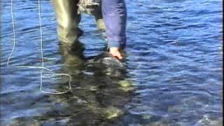 Ekspedicija Ribolovaca Sibir 1996.  part 3