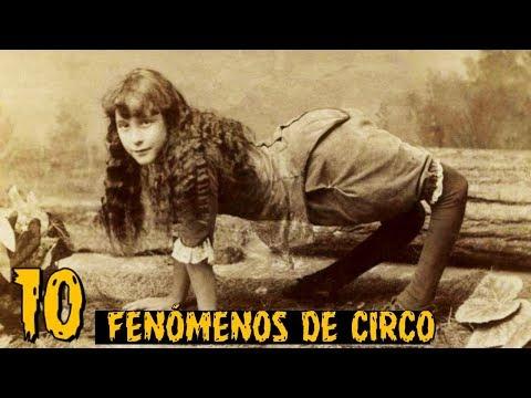 ¡top-10-fenÓmenos-de-circo-más-extraÑos-de-la-historia!