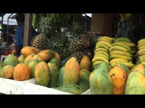 Farmers Market in