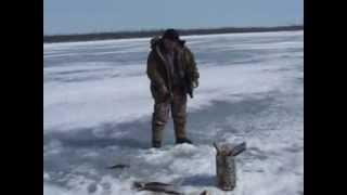 Зимняя рыбалка на Севере. Якутия