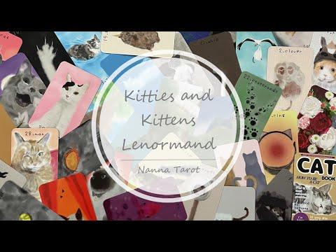 開箱  貓咪雷諾曼 • Kitties and Kittens Lenormand // Nanna Tarot