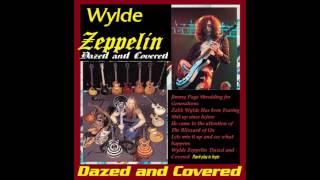 ZAKK WYLDE - Black Dog