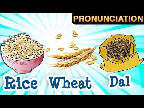 learn about grains and their names wheat rice barley youtube