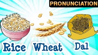 Learn About Grains And Their Names | Wheat | Rice | Barley