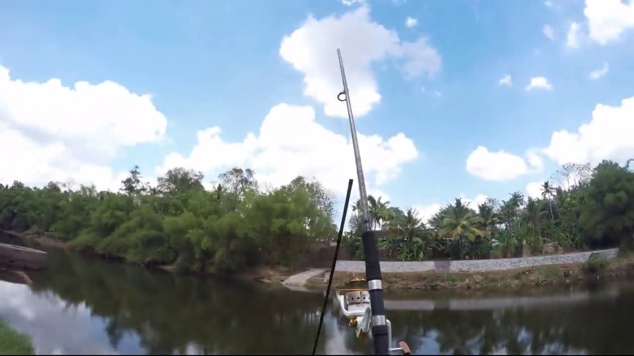 Humorous Fishing Fail Stick Leaping off to the River