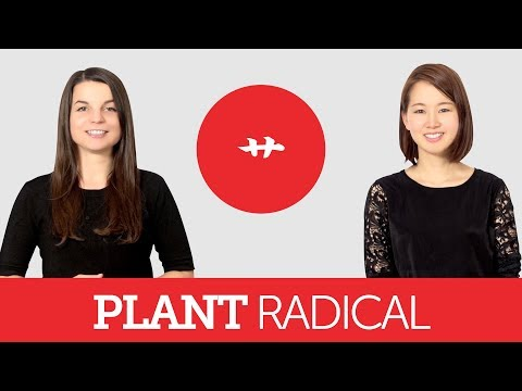 Introduction to Japanese Kanji - Plant Radical 艹