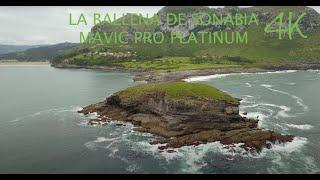 LA BALLENA 2020 - Sonabia - Castro-Urdiales - Mavic Pro Platinum (4K)