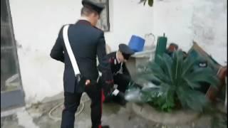 Siderno. Oltre 700 grammi di marijuana, arrestato dai Carabinieri