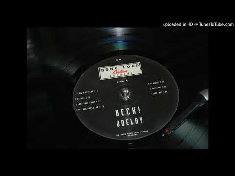 Beck - The New Pollution (vinyl audio)