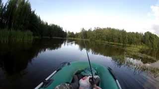 Ловля щуки на поверхностные приманки | уокер | поппер | (видео-отчет) рыбалка август 2015