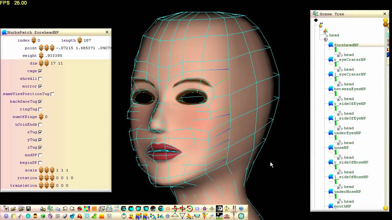 Modeling A Face From A Pre Stitched Nurbs Patch Structure