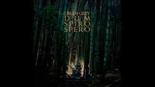 Dir en Grey - New Rasetsukoku (Dum Spiro Spero Version)
