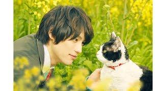 福士蒼汰と愛猫ナナとの絆に観客の涙止まらず 福士蒼汰主演『旅猫リポート』新予告映像