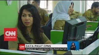 Pendaftaran CPNS Gelombang II Dibuka!