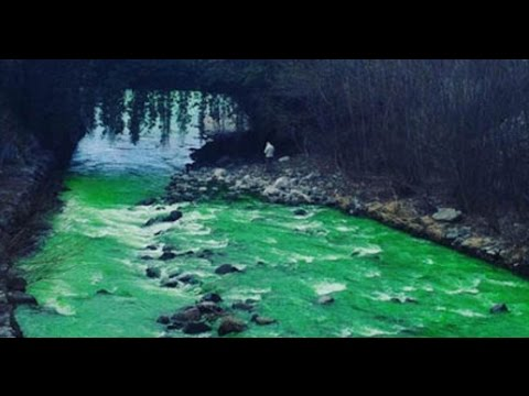 Spanish River turns BRIGHT GREEN