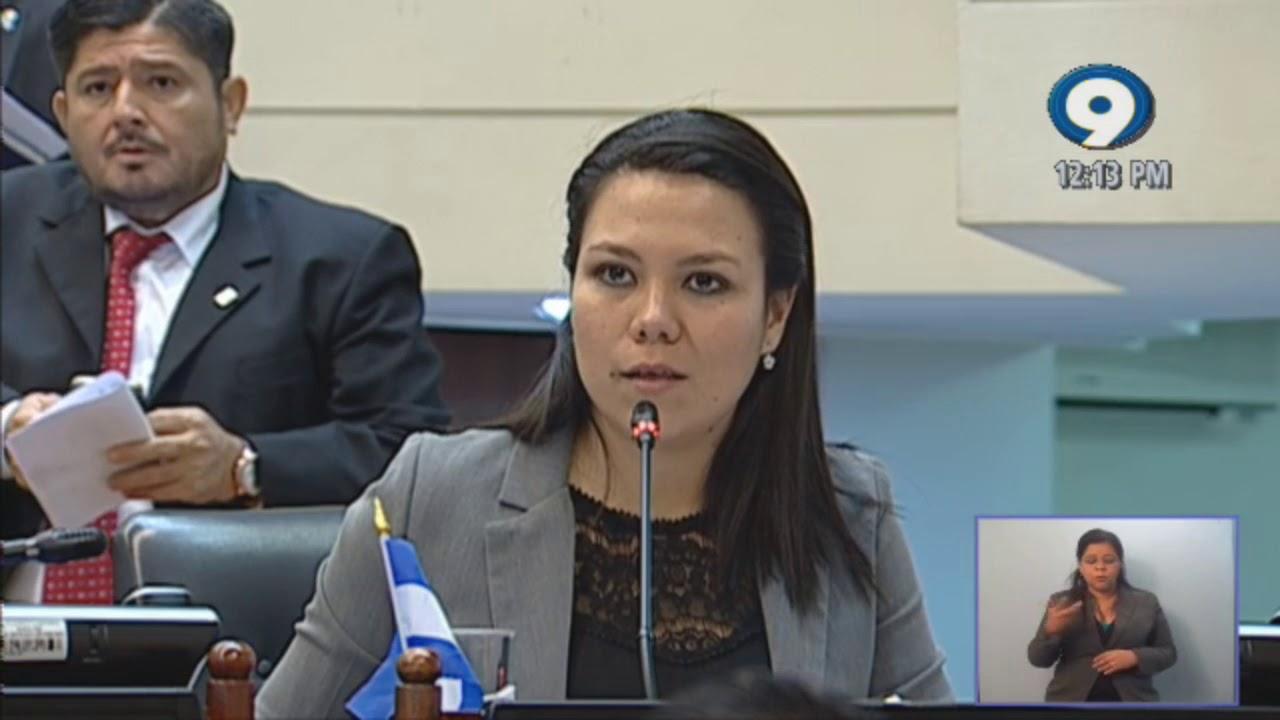 Anabel Belloso: Comisión Legislativa que investiga fondos entregados a ONGs carece de credibilidad