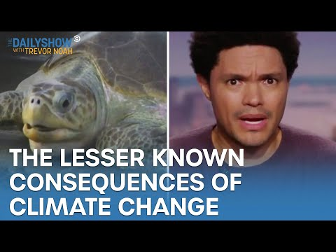 The Consequences of Climate Change You May Not Know About | The Daily Show
