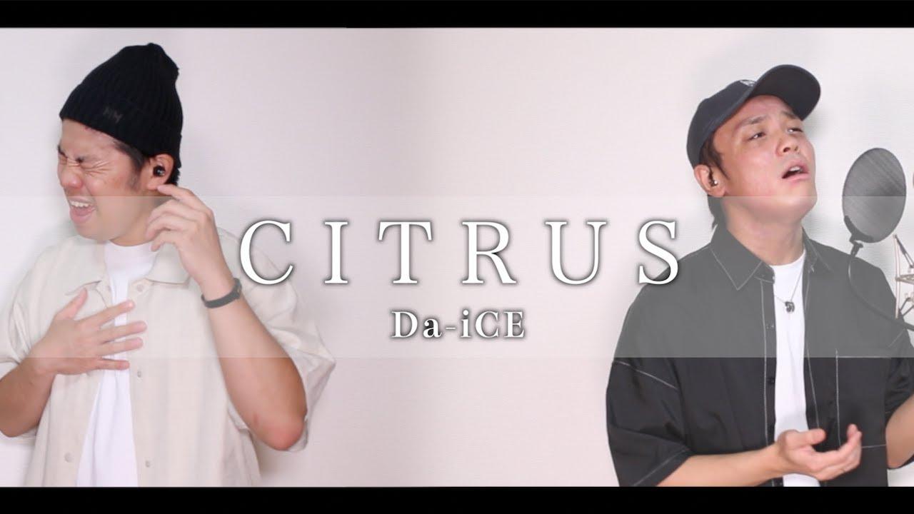 CITRUS / Da-iCE 【カバー】(日本テレビ系日曜ドラマ「極主夫道」主題歌)