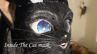 Cat mask interior