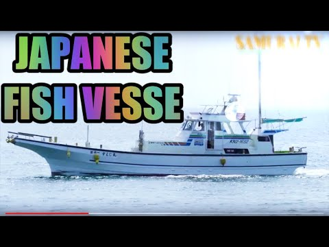 The Japanese Fishing Boat. Japanese Fishing Industry