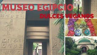 Ciudad de San José California USA visitando museo egipcio y comprando Dulces veganos.