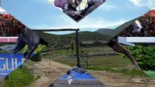 La Yegua Cebruna - Grupo Laberinto