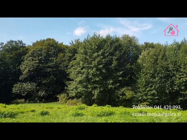 Večje zemljišče Duplek, prodamo, gsm 041/420-093