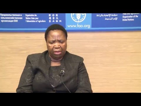 Minister for Agriculture and Food Security, Kingdom of Lesotho