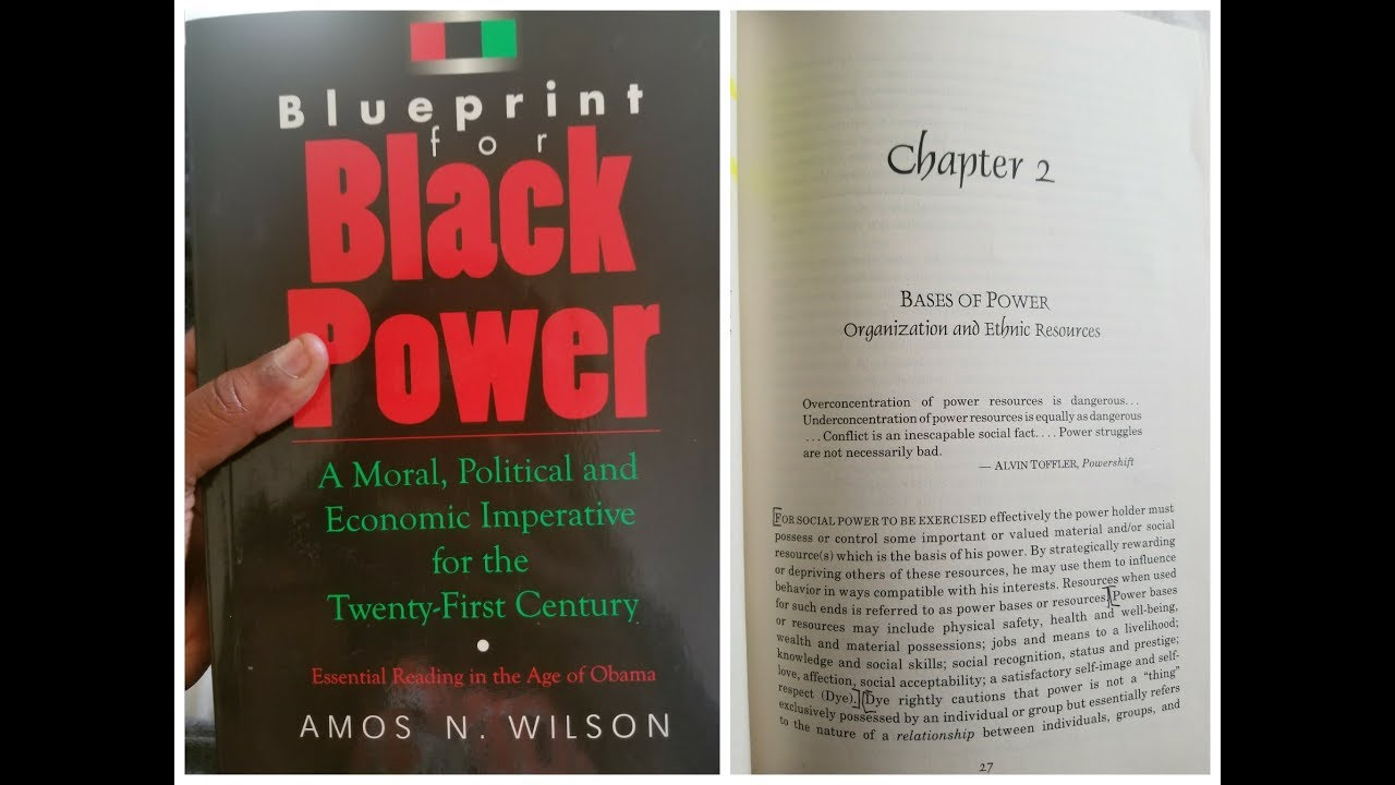 Dr. Amos Wilson, Blueprint For Black Power Chapter 2 - RAM Bookclub