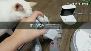 샤오미 로봇청소기 필터갈기 및 오류 10번 해결