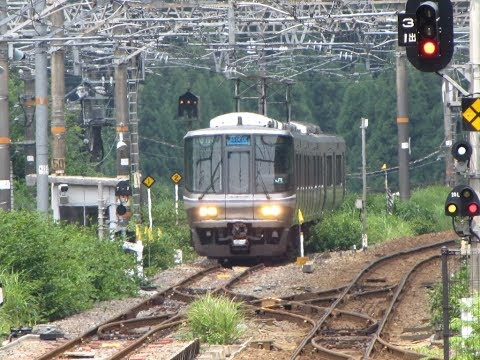 JR西日本 北陸本線 米原⇒敦賀 前面展望 JR West Hokuriku Main Line Maibara ⇒ T