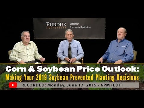 Corn & Soybean Price Outlook: Making Your 2019 Soybean Prevented Planting Decisions, June 17 Edition