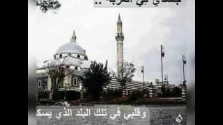 سورية حلب من حقي افتخر بشهباء الله يحميكي