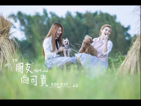 朋友尚可貴 / 魏嘉榆 vs 戴梅君 /【太極音樂官方MV】桃園花彩節