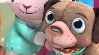Doc's Pet Vet - Meet Findo   Official Disney Junior Africa