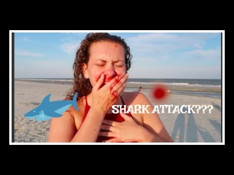 CLOSE CALL SHARK ATTACK!!! HILTON HEAD VLOG