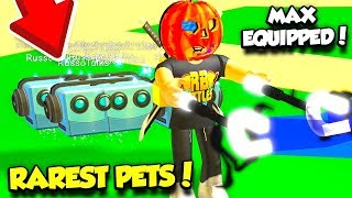 USING A FULL TEAM Of The RAREST PETS In MAGNET SIMULATOR!! *SO OP* (Roblox)