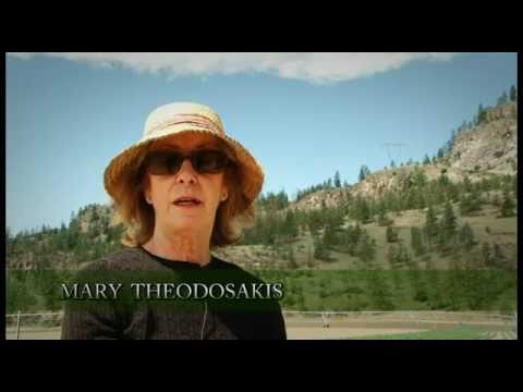 Evolution Media and Photography - Field of Greens with Mary Theodosakis