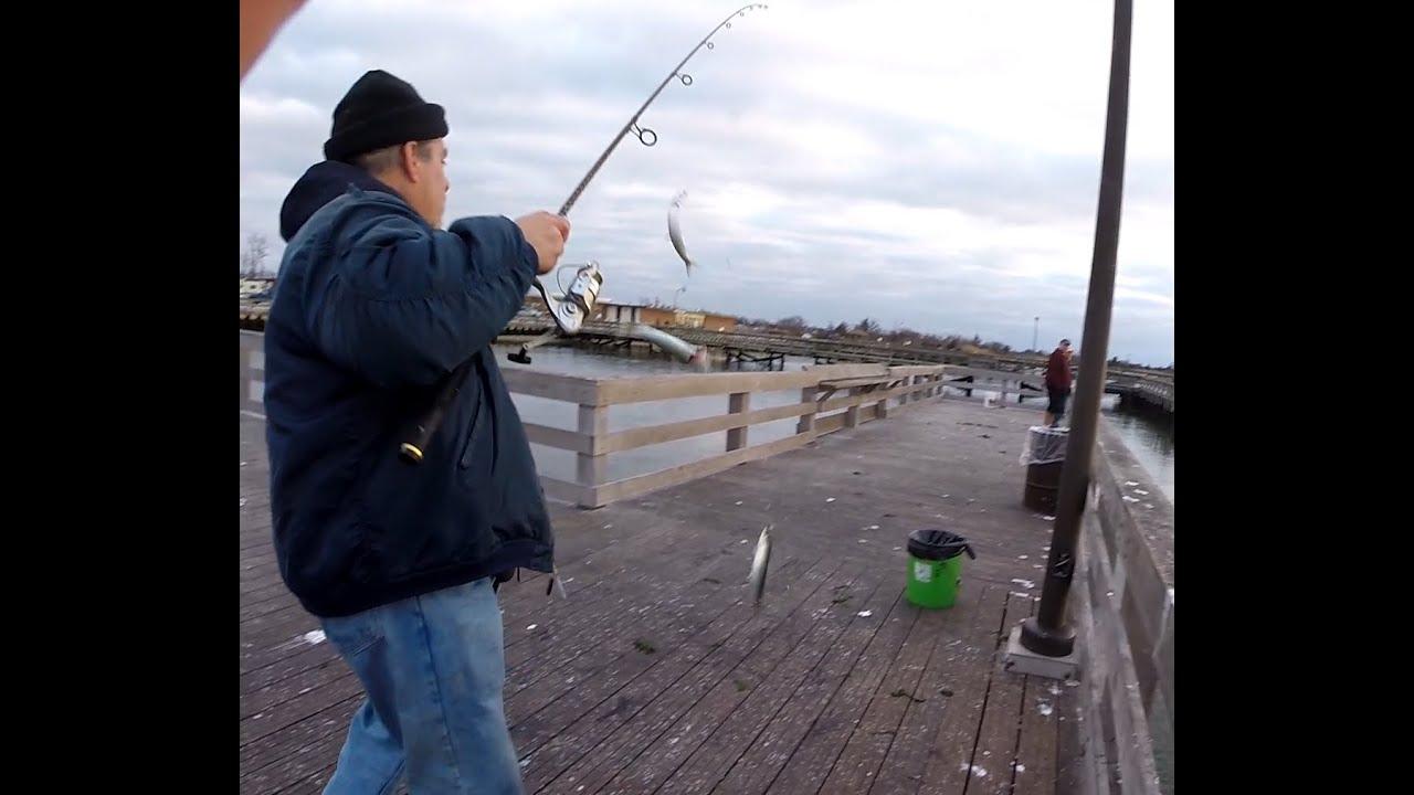 Jones beach field 10 pier herring fishing with gregory for Jones beach fishing pier