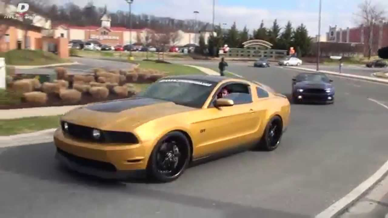 Crazy Street Accelerations Exotic Muscle Import