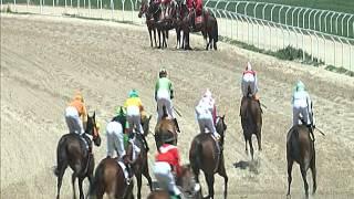 Vidéo de la course PMU PREMIO HECTOR URREA R.