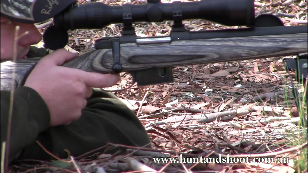 Cz 455 varmint review youtube - Cz 455 Varmint Review Youtube 19