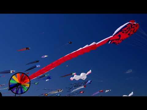 Festival of the Winds - Bondi Beach - Sydney, Australia