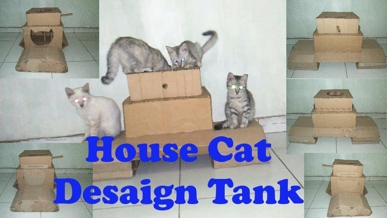 Kandang Kucing desain Tank | Bahan kandang dari kardus ...